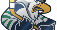 Surrey Eagles 3D Logo