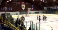 PJHL Bench Clearing Brawl